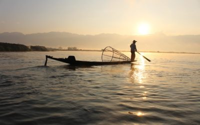 The Fisherman and Businessman