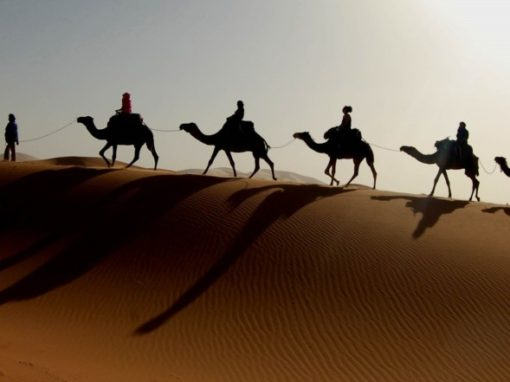 Sahara Retreat 2017