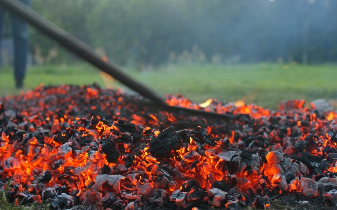 NCBI Firewalk – Firewalking for people with sight loss